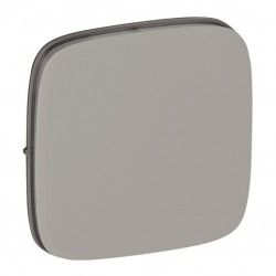 Лицевая панель заглушки, цвет алюминий, Valena Allure, Legrand